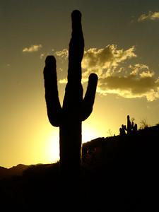 Sunset Over South Mountain Park - Near Tempe, AZ