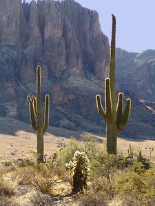 Lost Dutchman State Park - Arizona