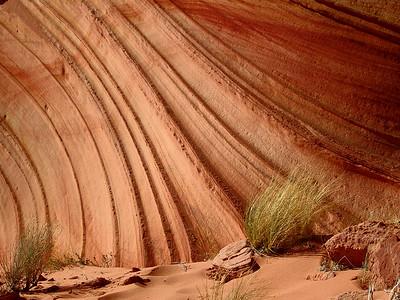 Vermillion Cliffs Wilderness Area - Arizona