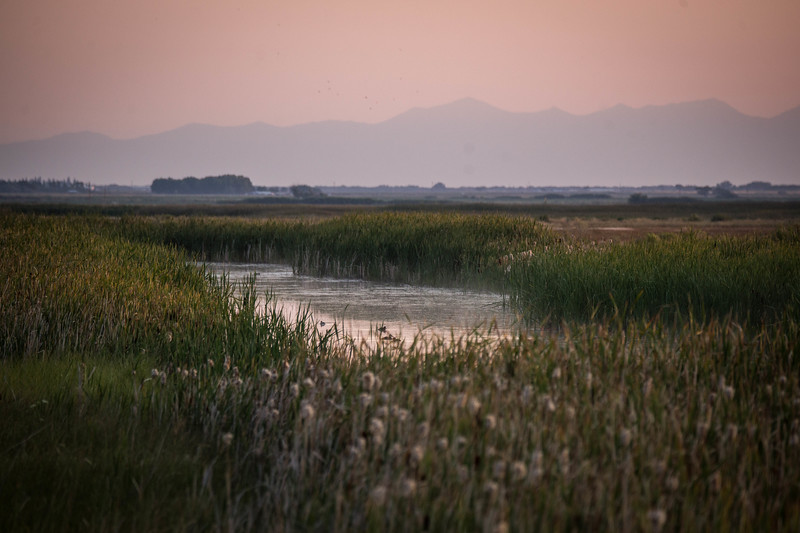 Monte Vista Wildlife Refuge