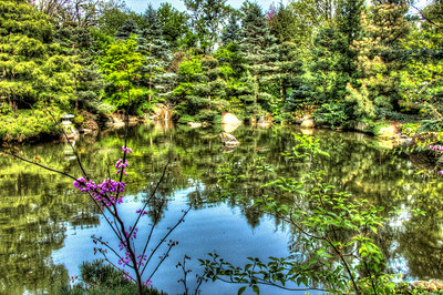 Anderson Japanese Gardens - 5.13.13