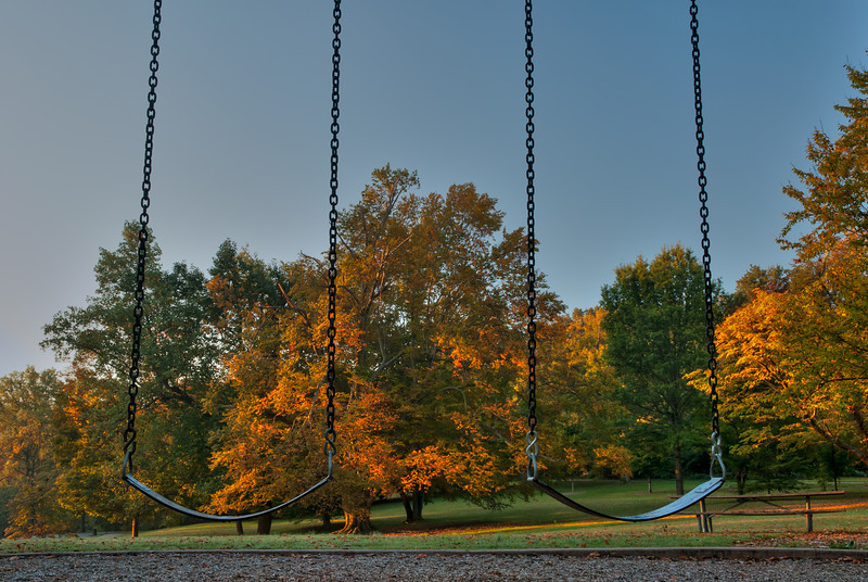 Swings at Cherokee Park in Louisville KY
