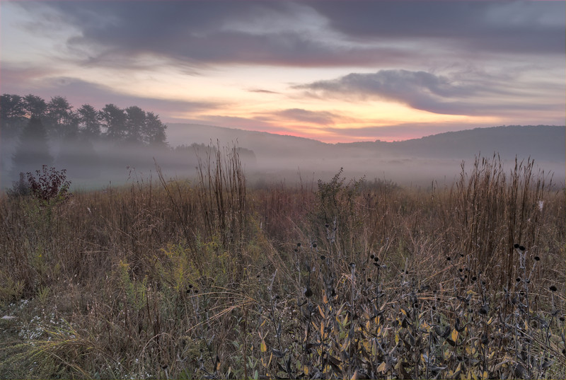 Dawn Breaking Over the Prairie of Bernheim Arboretum and Research Forest
