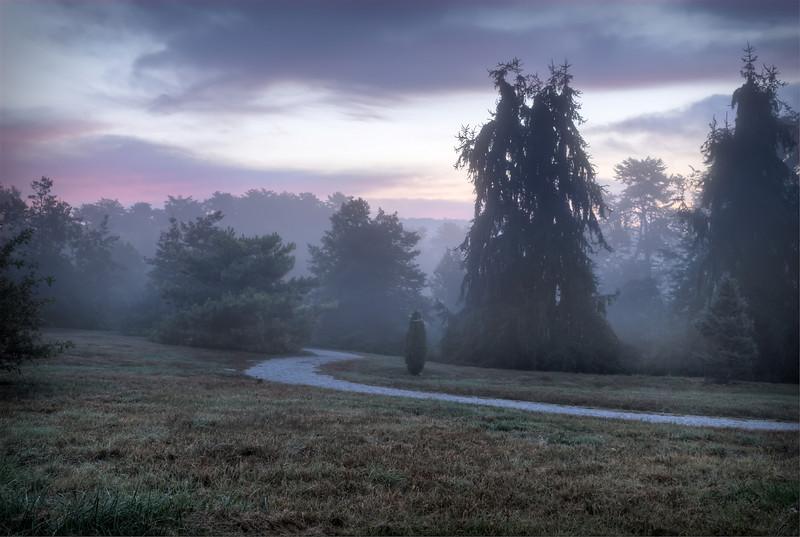 Foggy Morning At Bernheim Arboretum