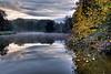 Cedar Pond Reflections at Bernheim Arboretum