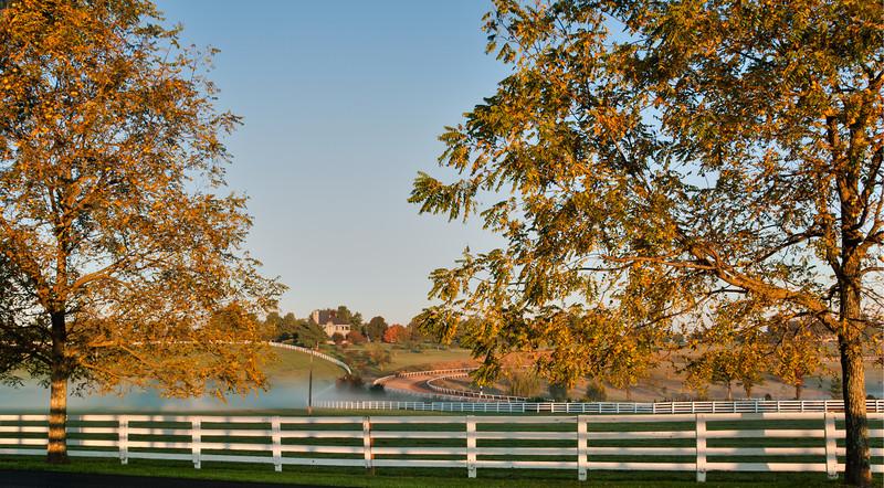 Donamire Horse Farm