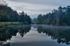 Holly Pond at Bernheim Arboretum