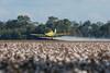 Cotton Crop Duster