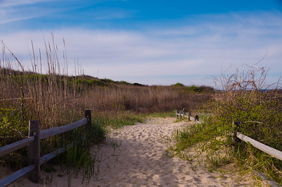 Nauset Coast Guard Beach - Cape Cod