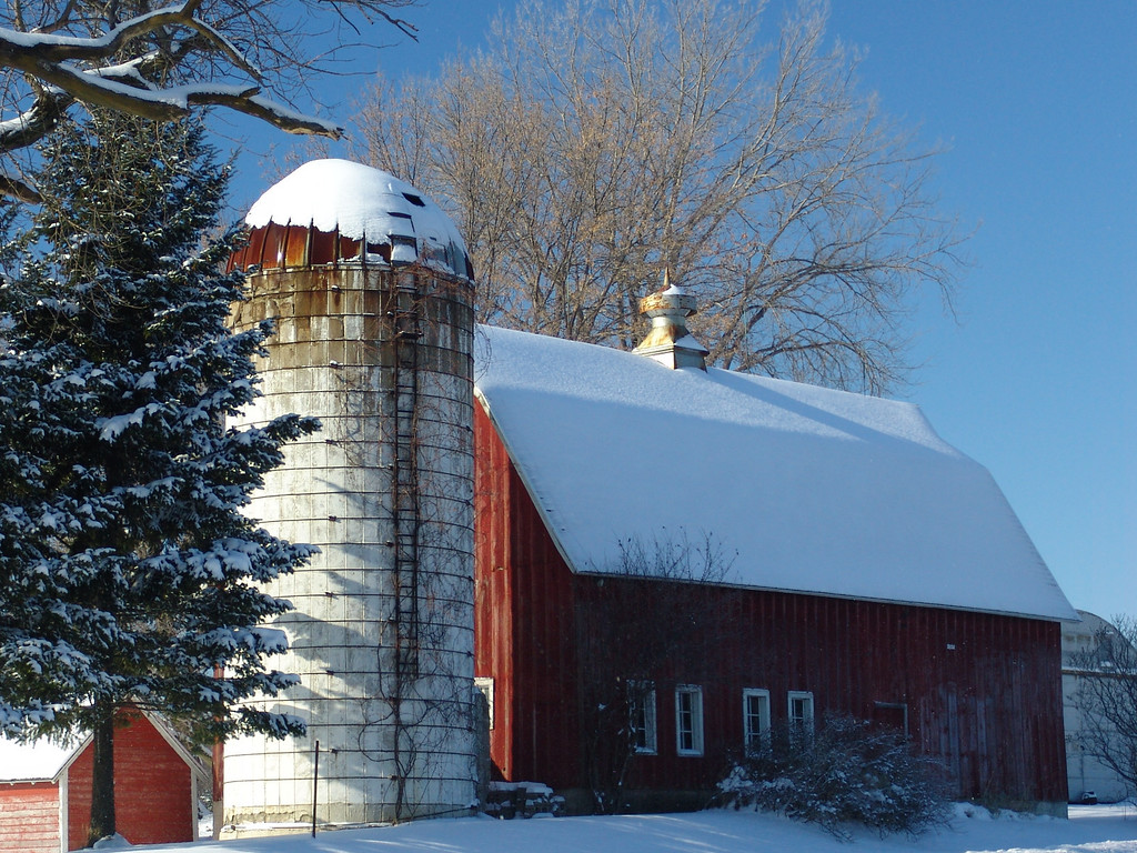 Winter On The Farm - Shakopee, Minnesota