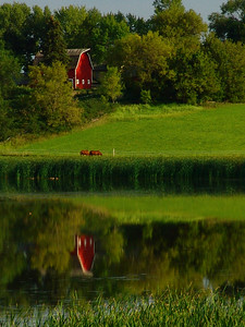Farm Land Reflections - Scott County, MN