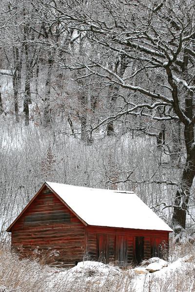 Late Snowfall - Henderson, Minnesota
