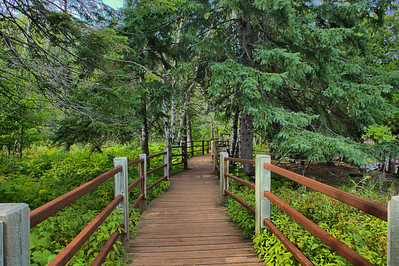 """Gooseberry Boardwalk""  A boardwalk at Gooseberry Falls State Park."