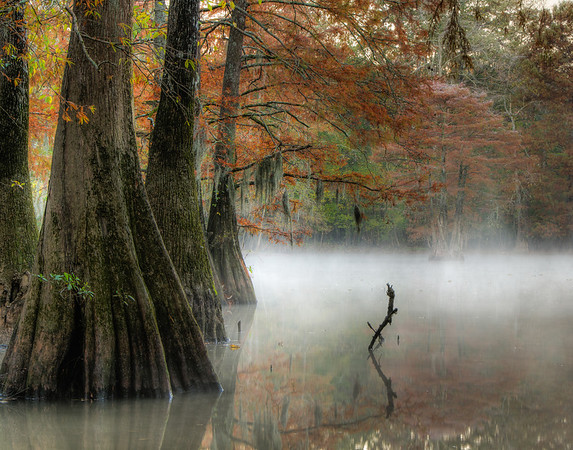 Fog at Mayes Lake