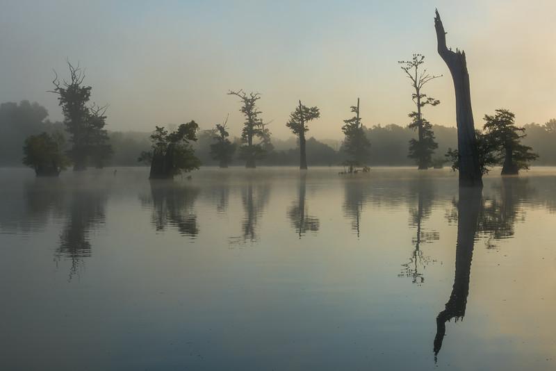 Dawn At Hwy 465