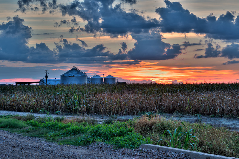 Mississippi Grain Bin Sunset