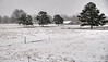 Snow at a Misissippi FaRM