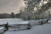 Snow On The Natchez Trace