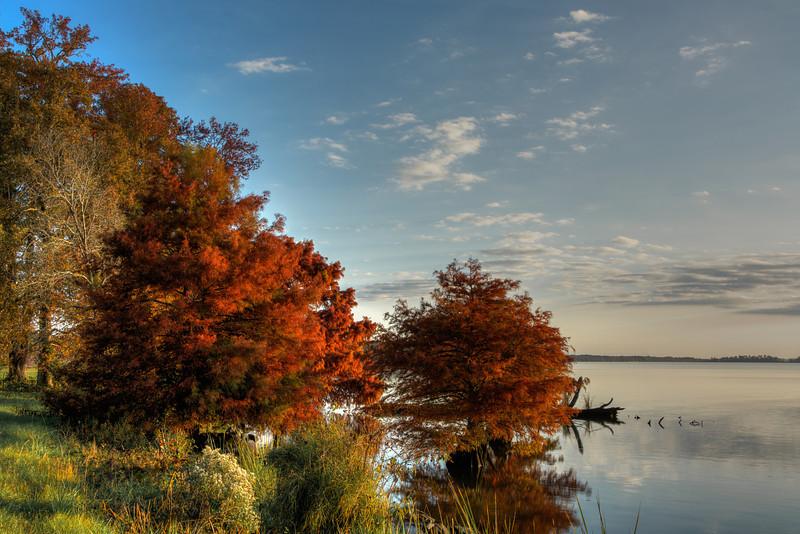 Fall Foilage at the Ross Barnette Reservoir