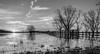 Sunrise_at_Ross_Barnette_Reservoir_Wildlife_Management_Area-5
