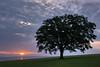 Sunrise_at_Overlook_Point