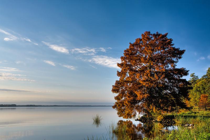 Autumn at the Ross Barnette Reservoir