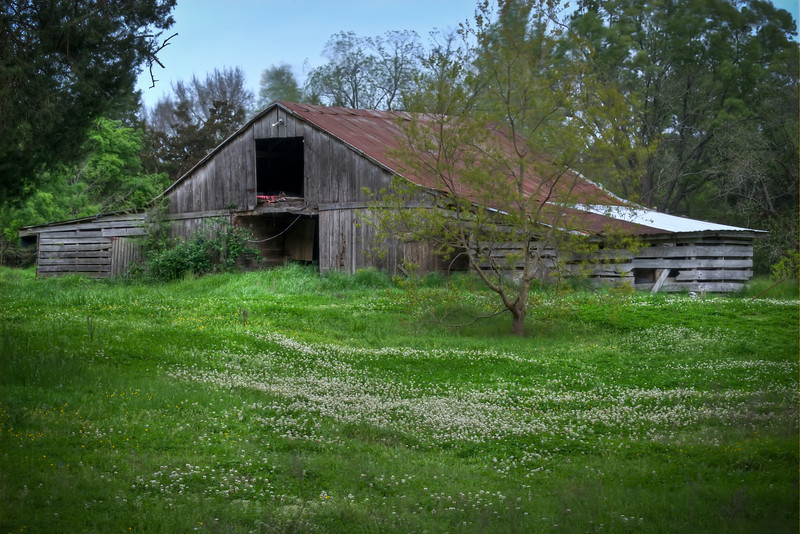 Stumbled across this old barn on Greens Crossing.  Had never been down this road even though its only a few miles from home.