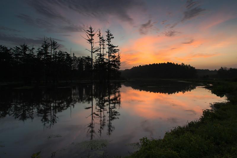 Dawn Breaking at St. Catherine Creek NWR