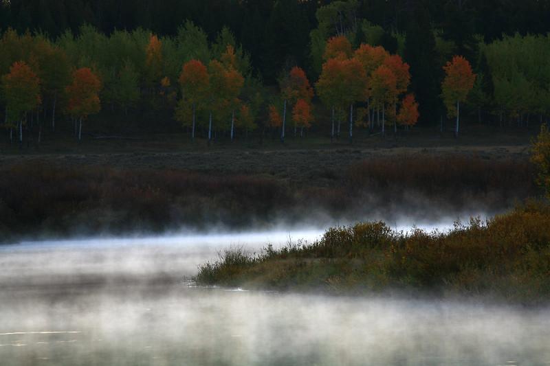 Morning Fog - Grand Teton National Park