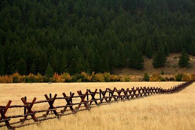 Fence Line - Near Ennis, Montana