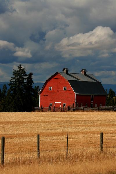 Farmland - Near Creston, Montana