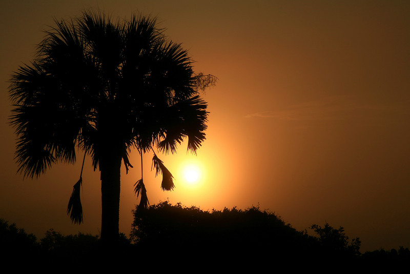 Southern Sunrise - Folly Beach, South Carolina