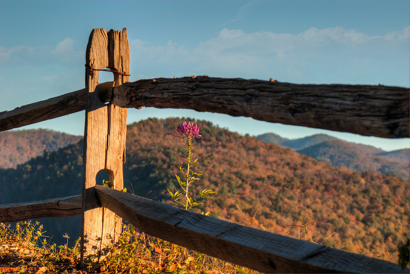 Appalachian Mountains  (Whitewater Falls Overlook)