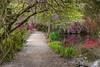 Garden Path at Magnolia Plantation