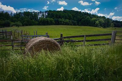 Abingdon Farm - Abingdon, Virginia