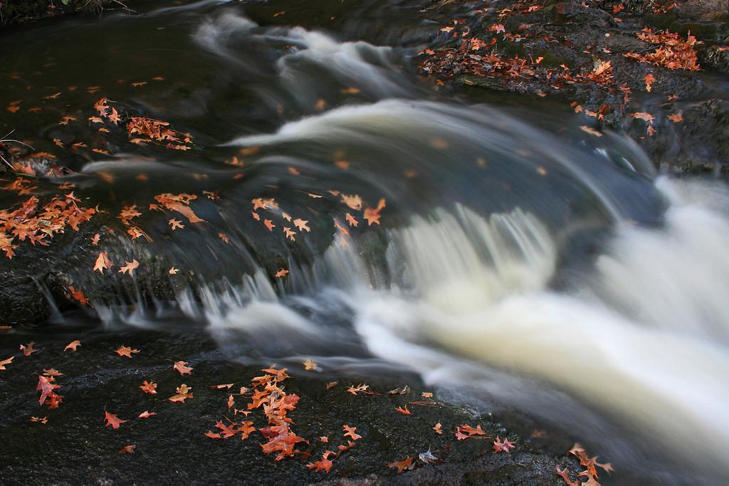 Hamilton Falls - Eau Claire County, Wisconsin