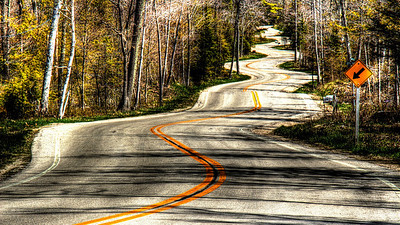 Winding Road to the Washington Island Car Ferry - Door County, Wisconsin - May, 2013