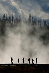 Geyser - Yellowstone National Park, Wyoming