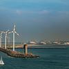 Seebrugge, Port