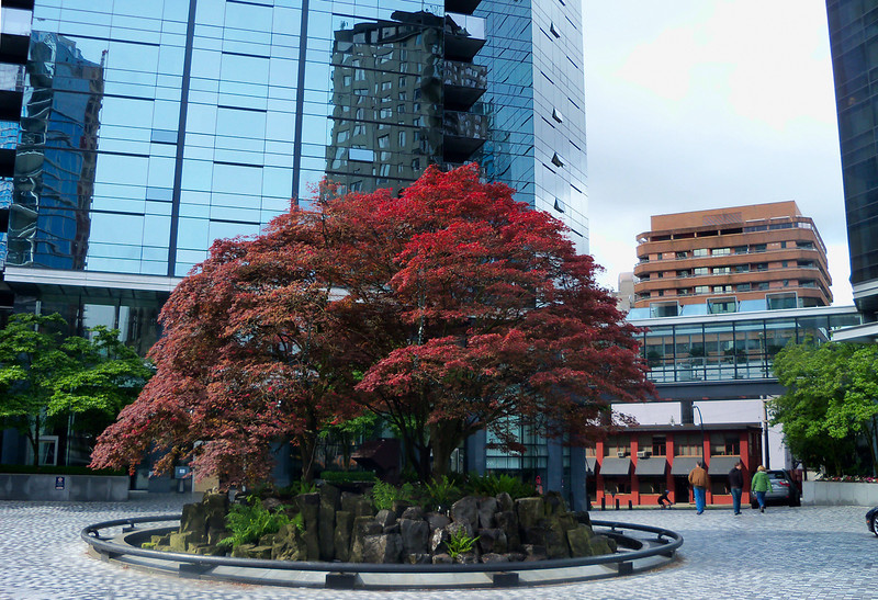 Vancouver, Bitish Columbia