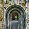 Conmacnois Monastic Site