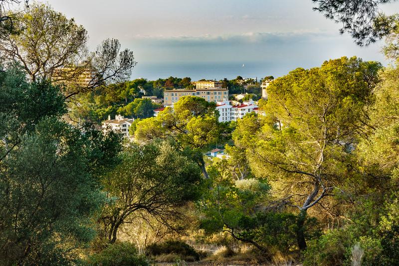 Palma de Mallorca from Castel de Bellver