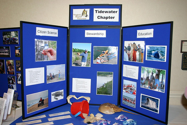 Tidewater chapter display