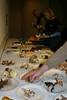 Mushroom samples collected by instructor Jon Ellifritz