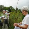 Ruth Douglas discusses grasses
