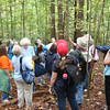 Exploring the history of the forest<br /> (Photo by Kathy Fell)