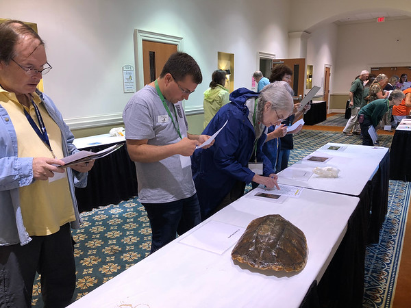VMN volunteers practice identifying and answering questions about wildlife in the Wildlife Habitat Education Program session.