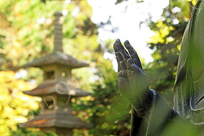 STY - BUDDHA 00014 The raised right hand of a Buddha statue in a Japanese tea garden, by Peter J Mancus
