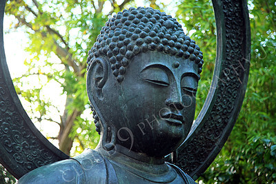 STY - BUDDHA 00018 Portrait of a peaceful looking Buddha statue, by Peter J Mancus