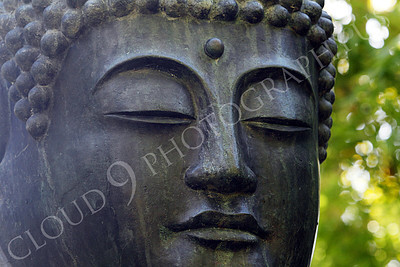 STY - BUDDHA 00024 A tight horizontal crop study of the face of a Buddha statue, by Peter J Mancus
